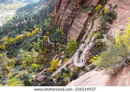 switchback trail in the Angels Landing hike at Zion National Park with autumn colors - stock photo