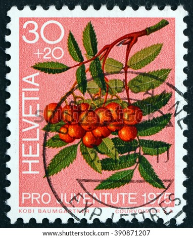 SWITZERLAND - CIRCA 1975: a stamp printed in the Switzerland shows Mountain Ash Berries, Sorbus Aucuparia, Forest Plant, circa 1975 - stock photo