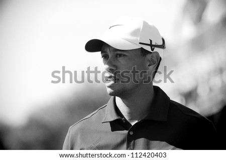 SYDNEY - NOV 12: American Tiger Woods in the third round in the Australian Open at The Lakes golf course. Sydney - stock photo