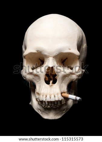Symbol of the dangers of smoking. Human scull with cigarette - stock photo