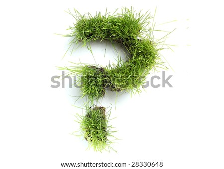 Symbols made of grass - question mark - stock photo
