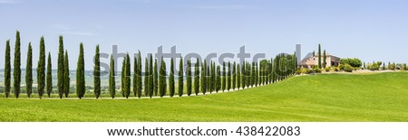 sypresses road to old villa in Tuscany in Italy - stock photo