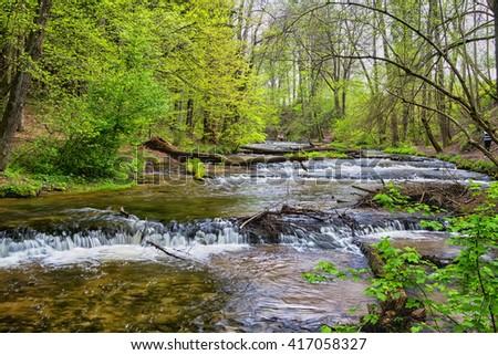 Szumy na Tanwi (Cascades on Tanew River) Roztocze (Roztochia), Roztoczanski Park  Narodowy (Roztocze National Park), Poland - stock photo