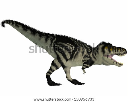 T-Rex Black and White - Tyrannosaurus Rex lived in North America in the Cretaceous Period and was an intimidating predator. - stock photo