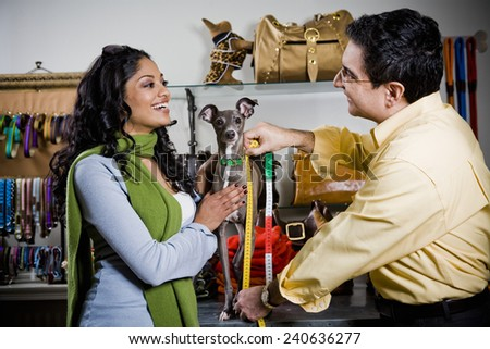 Tailor Measuring Dog for Clothing - stock photo