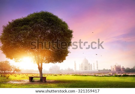 Taj Mahal view from the Mehtab Bagh garden at sunrise with purple sky in Agra, Uttar Pradesh, India - stock photo