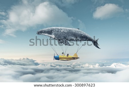 Take me to the dream lower fly - stock photo