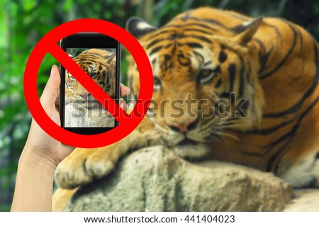 Taking animal photo on smart phone concept with prohibit sign - stock photo