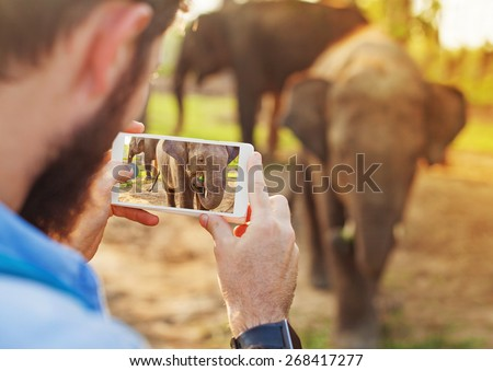 talented man photographing baby elephant with his mobile phone camera in Chitwan national park, Nepal - stock photo