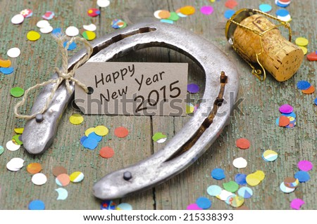 talisman for new year - stock photo