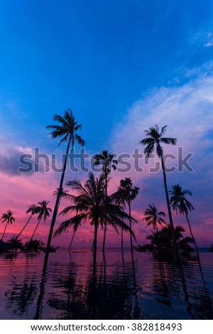 Tall coconut palm trees silhouettes at twilight sky reflected in water. Picturesque romantic sunset or sunrise scene on Koh Samui island, Thailand - stock photo