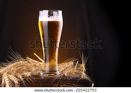 Tall glass of light beer on a wooden chest with barley ears - stock photo