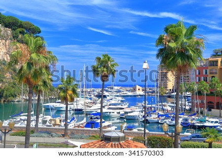 Tall palm trees near the Fontvieille harbor and the old town of Monaco-ville, Monaco - stock photo
