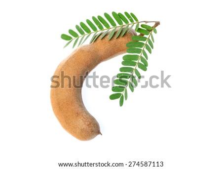 Tamarind fruit isolated on white background - stock photo