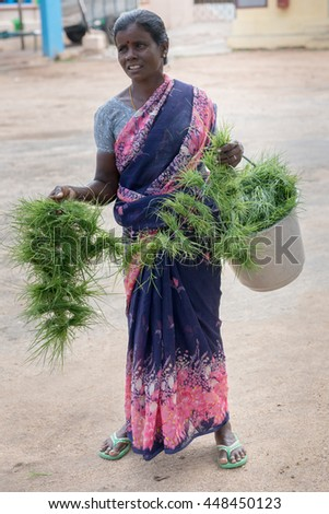 Tamil Nadu, India - October 18, 2013: Pillayarpatti Karpaga Vinayagar temple. Woman on street sells bundles of grass to be offered to Ganesha in the temple. - stock photo