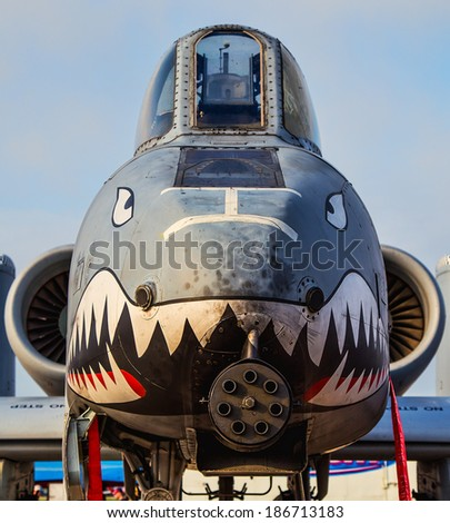 Tampa, Florida May 22nd, 2014 The face of an A10 Thunderbolt A.K.A. Warthog sits on a tarmac in the morning sun. - stock photo