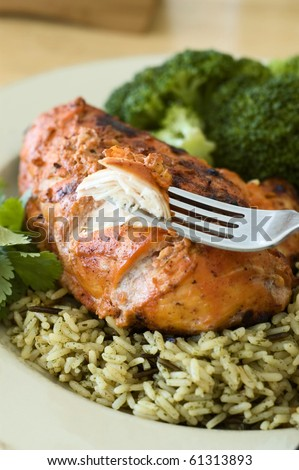 Tandoori Chicken Breast Dinner Being Eaten with a Fork - stock photo