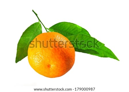 tangerine with leaves - stock photo