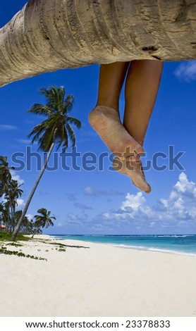 Tanned legs on the palm on the beach with white sand - stock photo