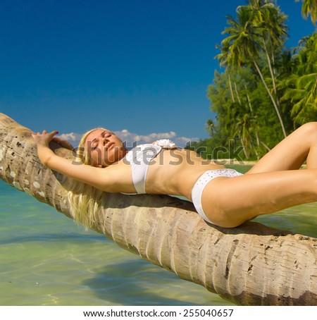 Tanning Pleasure In a Coconut Grove  - stock photo