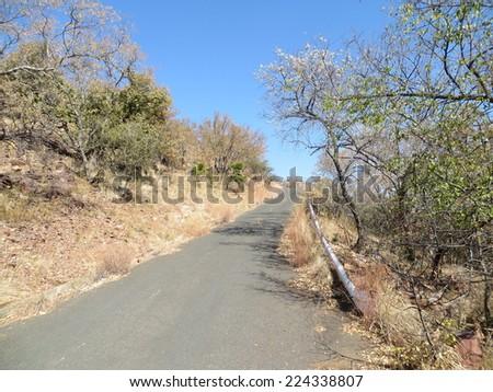 Tar road. - stock photo