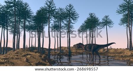 tarbosaurus walking in water in araukaria grove - stock photo