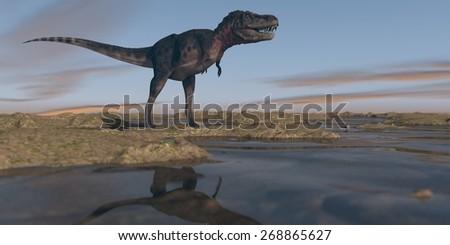 tarbosaurus walking on watered terrain - stock photo