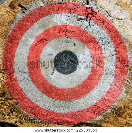 Target on the old tree trunk cut. - stock photo