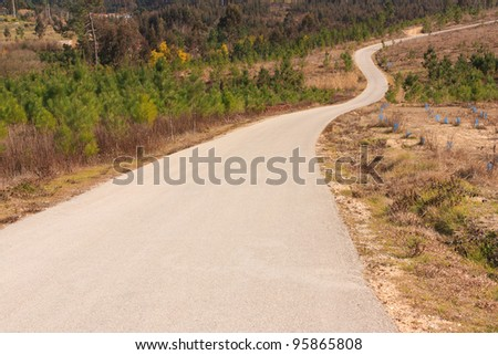 Tarmac road to the top of the hill , surrounded by woods - stock photo