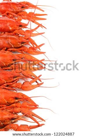 Tasty boiled crayfishes isolated on white - stock photo