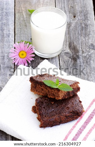 tasty brownie for a dessert - stock photo