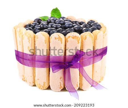 Tasty cake Charlotte with blueberries, isolated on white - stock photo