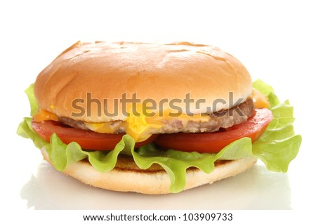 Tasty cheeseburger isolated on white - stock photo