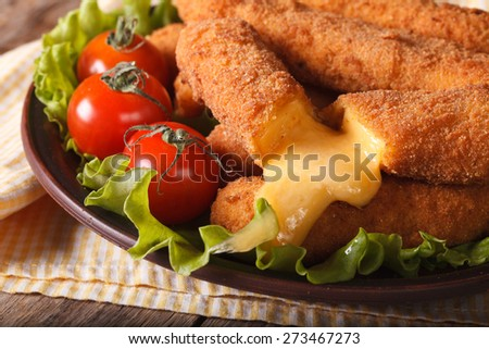 Tasty fried cheese close-up and fresh vegetables on a plate, horizontal - stock photo