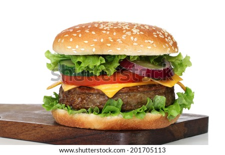 Tasty hamburger isolated on white background - stock photo