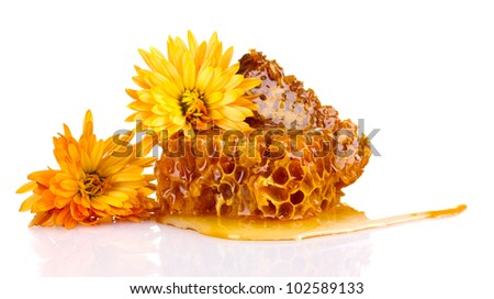 tasty honeycombs and flowers isolated on white - stock photo