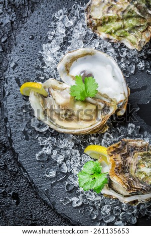 Tasty oysters on crushed ice with lemon - stock photo