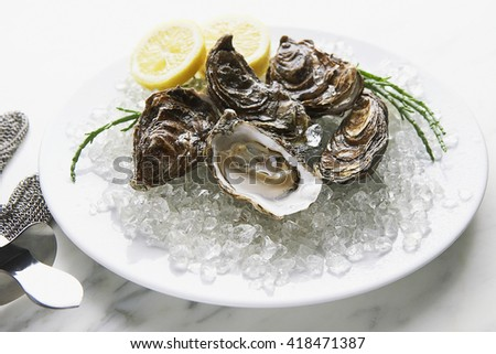 Tasty oysters on ice with lemon - stock photo