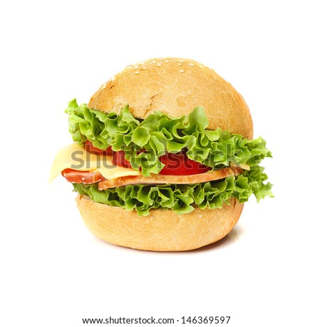 Tasty sandwich isolated on white background - stock photo
