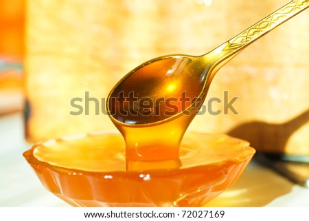 Tasty sweet honey with nuts - stock photo