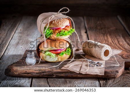 Tasty takeaway burger  wrapped in paper - stock photo