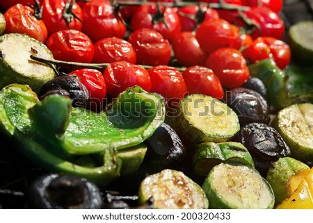 Tasty vegetables prepared on a grill, picnic in summer outdoors - stock photo
