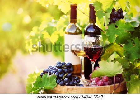 Tasty wine on wooden barrel on grape plantation background - stock photo