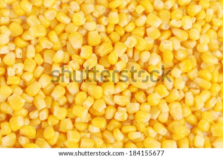 Tasty yellow grains of corn. Whole background. - stock photo