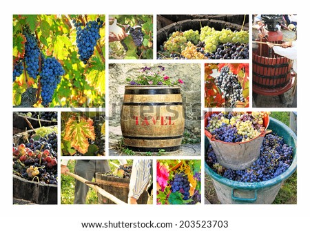 Tavel is a village in a wine region in Franc in southern Rhone. The region is famous for its pink wine - stock photo