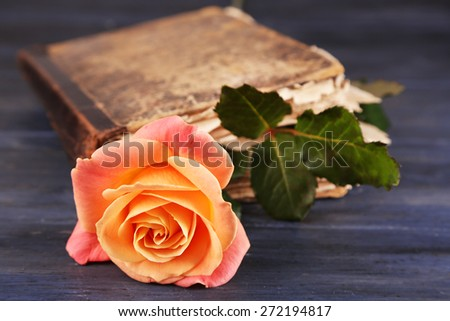 Tea rose with old book on color wooden table background - stock photo