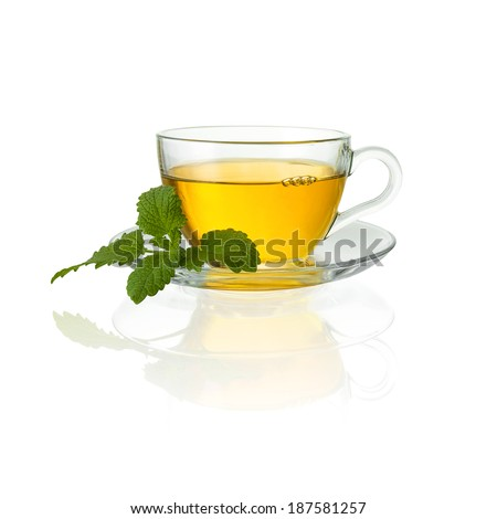 teacup tea with mint peppermint leaf hot drink aroma isolated on white with bubbles - stock photo