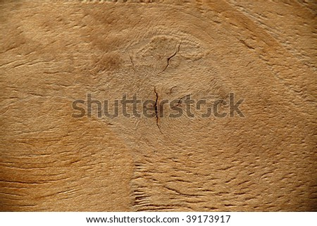 teak wood close up - stock photo