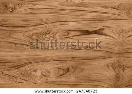 teak wood plank with unique natural patterns for decoration - stock photo