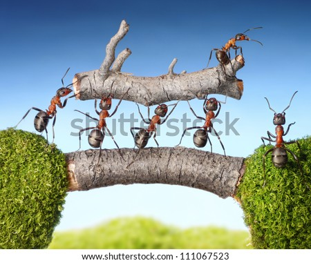 team of ants carry log on bridge, teamwork concept - stock photo